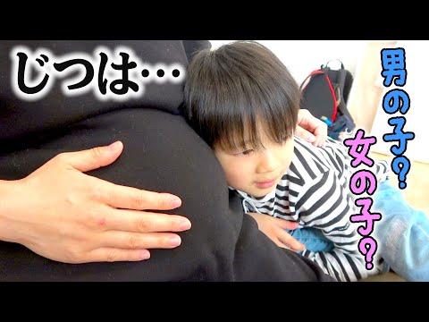 妊娠中のママのお腹にいる赤ちゃんに話しかけてみた!男の子?女の子?妊婦さんのお腹に怯えるたけるちゃん【ロボットチャンネル】