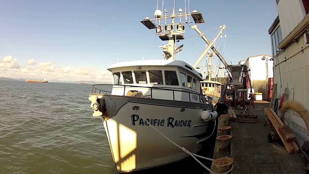 Commercial Fishing — Skansie Brothers Netshed