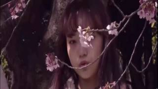 Download Lagu Ignite - Alan Walker ft. K-391 FULL VIDEO Mp3