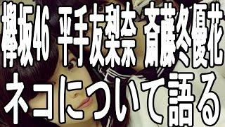 【欅坂46】 メンバー 平手 友梨奈 斎藤 冬優花 ネコについて語る 欅坂46...