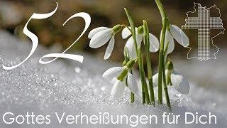 Gottes Verheißungen für Dich - Epheser 1,5   Videokalender 52/365 - Deutschland braucht JESUS