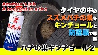 〇ハチの巣キンチョール2:タイヤの中のスズメバチの巣を夜間防護服で取り除く