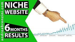 [LIVE] Niche Site: Results after 6 Months