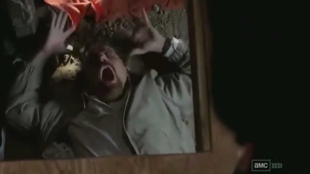 Download Walter White - Hysterical Laugh - S04E11