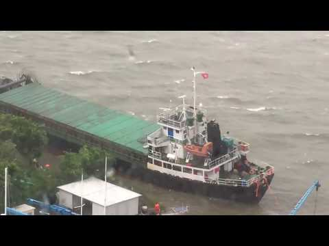 Crew Abandons Ship in Hong Kong's Discovery Bay During Typhoon Hato