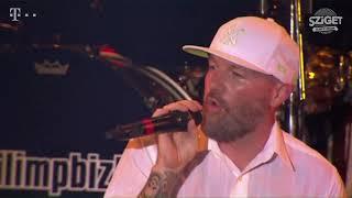 Limp Bizkit - Gold Cobra (Live at Budapest, Hungary, 2015) [Official Pro Shot]