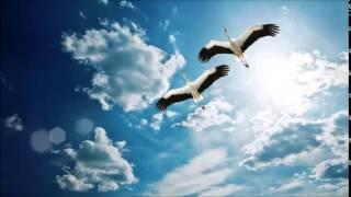 Скачать Boral Kibil Anka Sezer Uysal S Flying High Remix