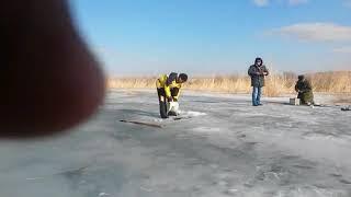 Ловим рыбу ведром зимняярыбалка