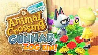 GUNNAR / RAYMOND ZOG EIN!! 🏝 39 • Let's Play ANIMAL CROSSING NEW HORIZONS