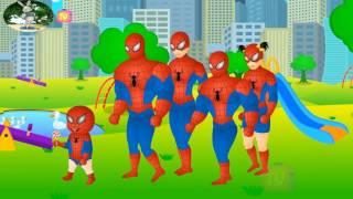 Phim hoạt hình vui nhộn cho bé -Siêu nhân người nhện Spiderman đi câu cá mập - Finger Family .mp4