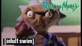 Geheime Abenteuer | Rick and Morty | Adult Swim