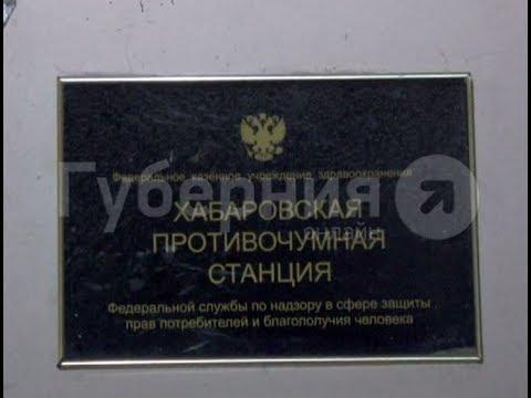 ФКУЗ Дагестанская противочумная станция Роспотребнадзора