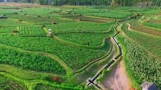 Pesona kepulauan Indonesia Pulau sapudi madura