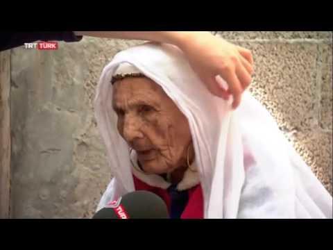 TRT Muhabirini ısıran Zombi Nine