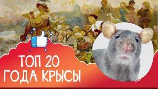 Топ-20 фантастики, фэнтези и даже детской литературы с крысами и мышами