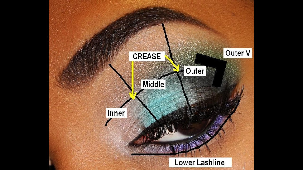 tutorial eye diagram back-to-basics 💥 parts of the eye & eyeshadow placement ...