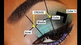 💥 BACK-TO-BASICS 💥 Parts of the Eye & Eyeshadow Placement for BEGINNERS!