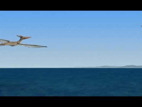 Dinosaur Safari (Early Cretaceous) Clip #8: Pteranodon