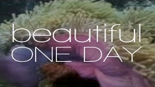 Beautiful One Day - Trailer