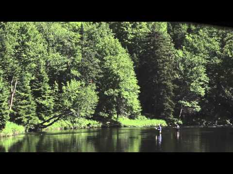 The Hungry Trout - Fly Fishing In The Adirondack Mountains