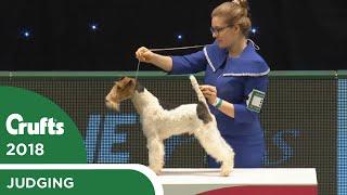 international-junior-handling-competition-first-round-part-1-crufts-2018