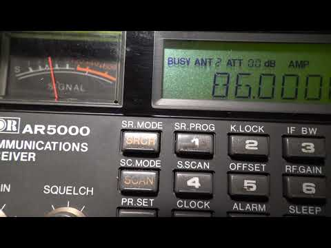 Dxen 3 5 Meterband 29 05 2020