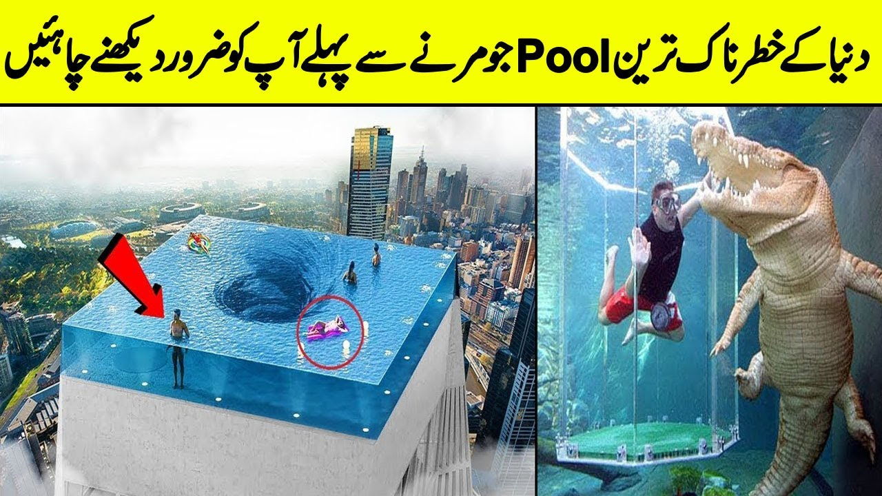 Best swimming pools in the world | Top  pools that will shock your mind | Daily cover