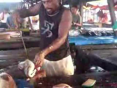 Sorong Fish Market