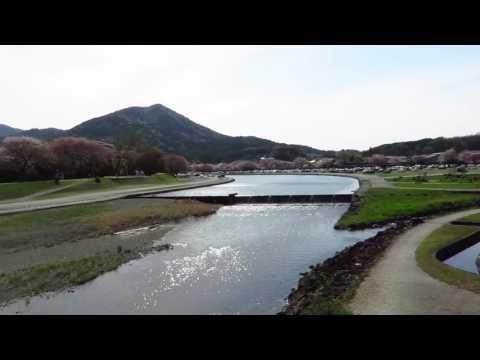 五十鈴川 到 伊勢神宮 Isuzugawa River , Ise-jingu Shrine (Naiku)