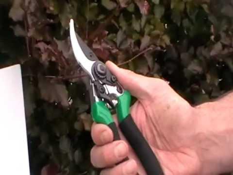 Secateurs (Pruning Shears)