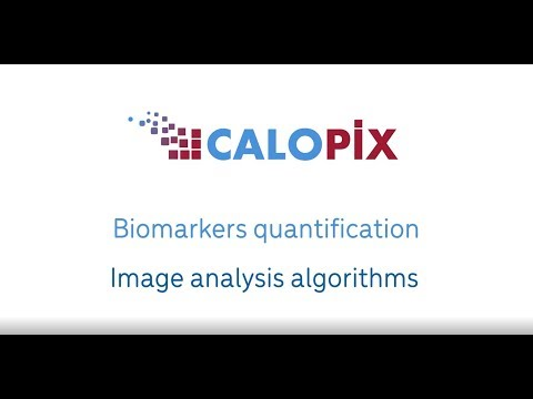 Pharma & Biotech support with image analysis, sharing and