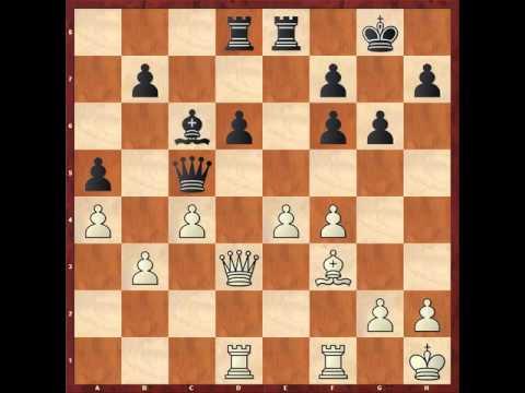 11 1 e4 c5 2 Nf3 Nc6 3 d4 cxd4 4 Nxd4 g6 5 c4 Nf6 6 Nc3 d6 7 Be2 Nxd4 V
