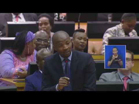 THIS IS A MUST WATCH CHAOS!!!!! EFF,UDM,COPE VS ANC AND THE DEPUTY SPEAKER