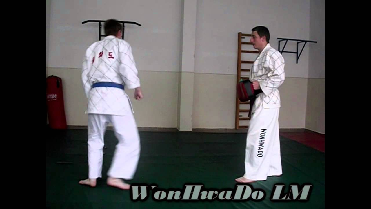 12. WHD form in our training - YouTube