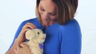 Ходячие зверята (Пудель и щенок Бисквит) FurReal Friends Hasbro