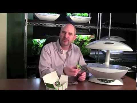 Indoor colture idroponiche 1 impianto 3 sistemi doovi - Colture idroponiche in casa ...