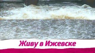Живу в Ижевске 03.04.2019