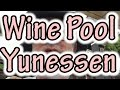 Hakone Yunessen Japan pools with wine, sake, nibbly fish, coffee, green tea, a mad place