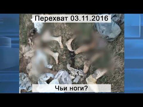 Повторное изнасилование девицы в лесу / Русское порно