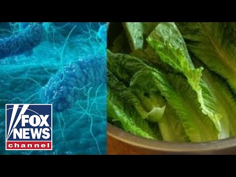 E. Coli outbreak: What to know