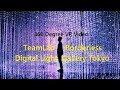 TeamLab Borderless The Digital Light Gallery Tokyo 360 DEGREE VR VIDEO