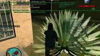 [ПРИВАТНЫЙ] CLEO ГМ|GM для Evolve-RP |||ЖЕСТЬ!!!!