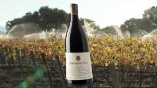 Edward Sellers 2007 Cuvee Des Cinq Red Blend
