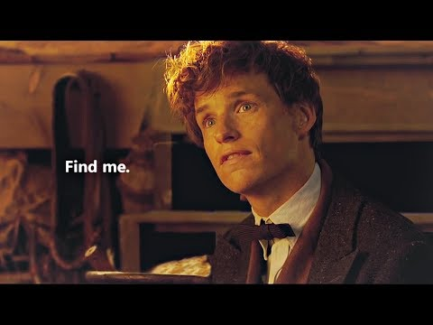 Newt And Tina | I Will Find You Again.