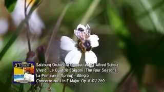 Vivaldi: Le Quattro Stagioni (The Four Seasons) - La Primavera (Spring): Allegro""
