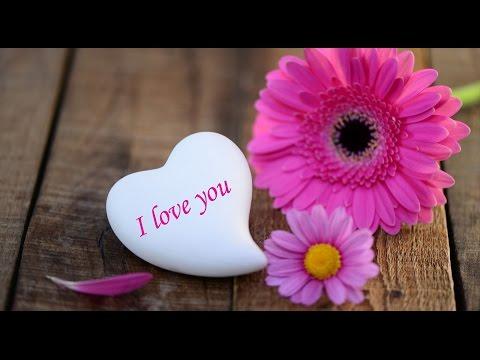Happy Valentines Day wishes 2016, Valentine's Day Whatsapp Video, Valentine's Day Greetings, SMS 10