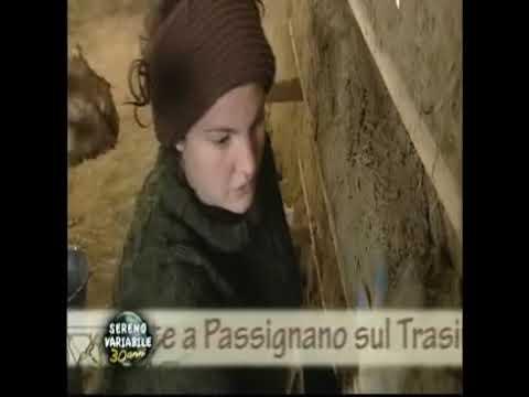 2009 Panta Rei a Sereno Variabile