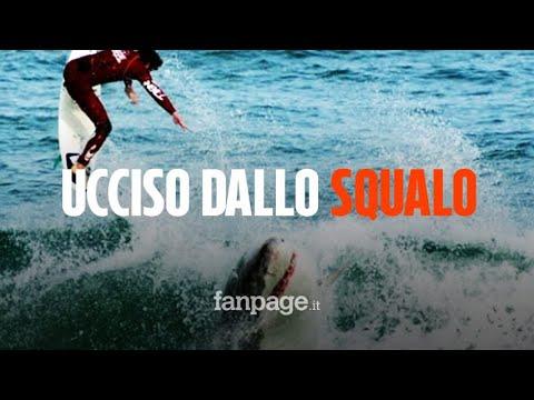 Surfista morto sbranato da uno squalo: 'Non ho mai visto niente del genere'