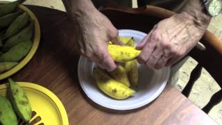 Home Grown Bananas - September 26, 2013