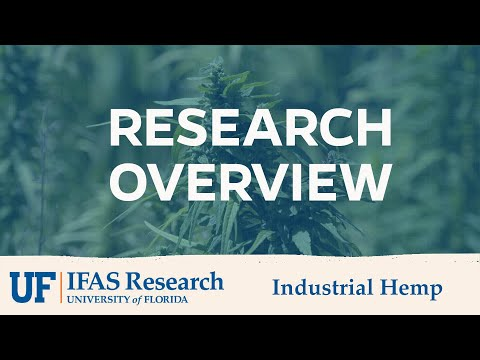 UF/IFAS Industrial Hemp Research Overview